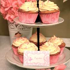 Pretty Pink Ballerina Birthday Party - None