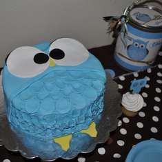 Baby Shower Owls - Owls