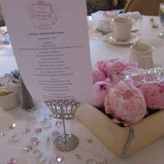 Nicolina's Pink Bridal Tea Rose Shower - Bridal Tea Rose