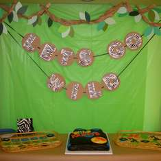 Wild Kratts 4th Birthday - Wild Kratts
