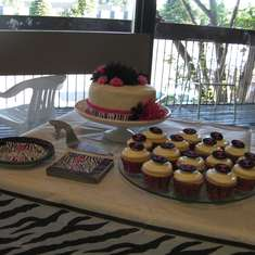 Trish's Bridal Shower - Hot Pink with Zebra Print