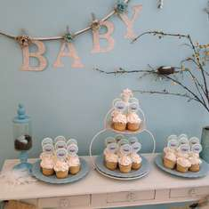 Birdie Baby Shower - Birds/Nest