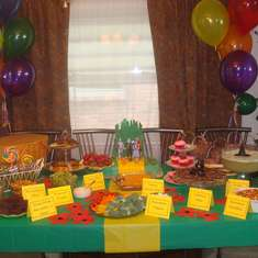 Sofia's Wizard of Oz bash - Wizard of Oz