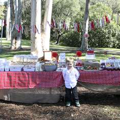 Picnic in The Park for Tahlin's 4th Birthday Party - Picnic - Red & White Gingham