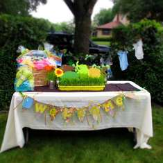 Sebastians Baby Shower - Jungle Safari