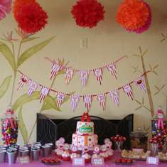 Kamryn's 2nd Birthday Party - Elmo