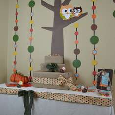 Fall Owl Baby Shower - Fall Owls