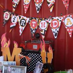 Massimo and Valentino's 1st & 3rd Birthdays - Firetrucks and Dalmatians