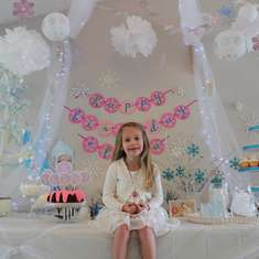 Pixie Perfect Periwinkle Party - Winter Wonderland   Snowflake