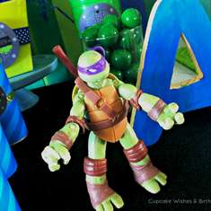 Teenage Mutant Ninja Turtle Party - None