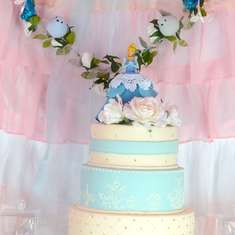 Cinderella Inspired Party - Cinderella Princess