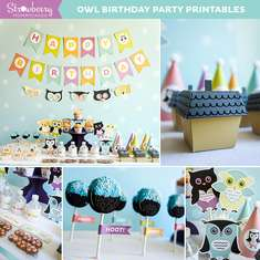 Hoot! Owl Birthday Party - Owl Theme