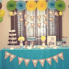 Sebastian's First Birthday - Owl Theme