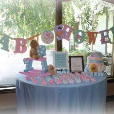 Gender Neutral Bear baby Shower - Pink and Blue/ Teddy bear