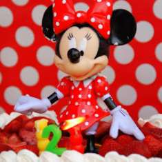 Vida's 2nd Birthday - Mickey Mouse Clubhouse or Minnie Mouse