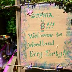 Last year in the Enchanted World  - Enchanted Forest/Woodland Fairy