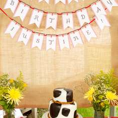 A Farm Party Fit for a Cowgirl - Farm party