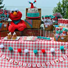 Elmo's Picnic in the Park!! - None