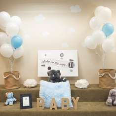 Up Up and Away, Baby G is on the Way - Hot Air Balloon and Baby Elephants