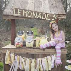 Lula's Lemonade Party - Lemonade Stand