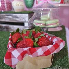 Vintage Strawberry Shortcake - Vintage Strawberry Shortcake