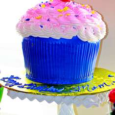 MJ's Cupcake Birthday Celebration - Cupcakes