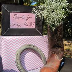 Ashtyn's Outdoor Cowgirl Party - Pink cowgirl