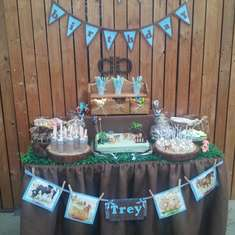 1st Birthday - Farm Theme
