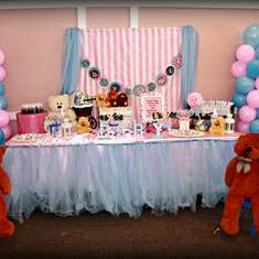 Gender Neutral pink and Blue Baby Shower - Pink and Blue, Teddy Bears