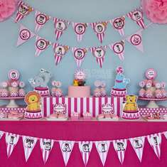 Pink Circus Carnival Baby Shower - Circus/Carnival