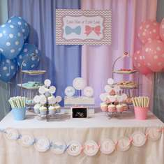 Little Man or Little Lady - Gender Reveal