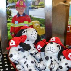 Firetrucks and Dalmatians 4th Birthday - Firetrucks and Dalmatians