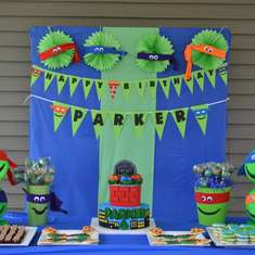 Parker's 6th birthday - Teenage Mutant Ninja Turtles