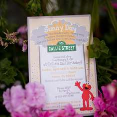 Sunny Day: a Sesame Street Inspired 2nd Birthday Party - Sesame Street inspired