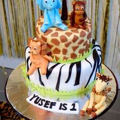 Yusef's 1st Birthday Party - Jungle Safari