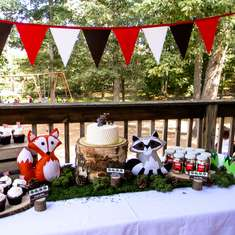 Austin's 1st Birthday - Woodland