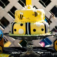 Fun to BEE One! - Bumble Bees
