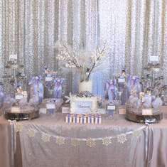 Brianna's Quinceanera - Winter Wonderland