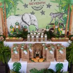 Safari Adventure Party - Safari Adventure Party