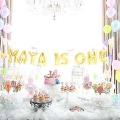 Maya's 1st dreamy hot air balloons - Hot Air Balloon & Unicorn themes