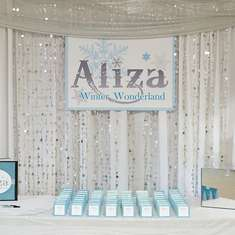 Aliza's Winter Wonderland - Winter Wonderland Bat Mitzvah