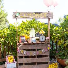 Vintage Lemonade Stand Party - None