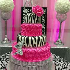 zebras party ideas catch my party