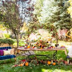 Whimsical Rustic Fall Party  - Whimsical Rustic Fall Party