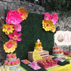 Lily's Lemonade Stand - Pink Lemonade Party