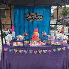Leilani's Birthday Bash  - Shopkins