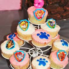 Paw Patrol Skye Birthday Party - Paw Patrol Skye