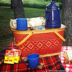Rustic Outdoors Camping Birthday Party - Camping / Summer Camp