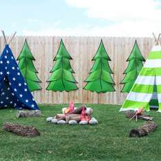 Madden's 3rd Birthday Bash - Camping/ Rustic Woodland