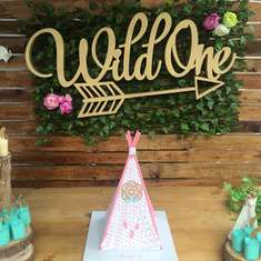 Aria's Wild One birthday  - Wild One